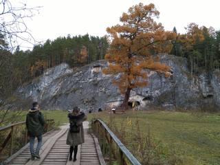 http://images.vfl.ru/ii/1508333002/8201d1ee/19049472_m.jpg
