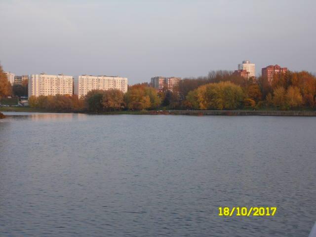 Беседка - Страница 5 19052795_m