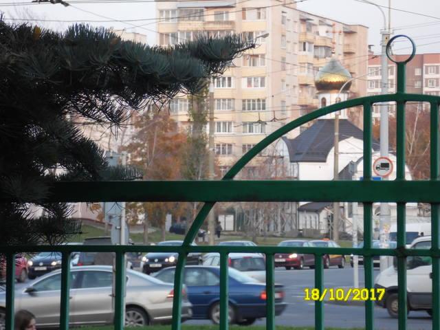 Беседка - Страница 5 19052798_m