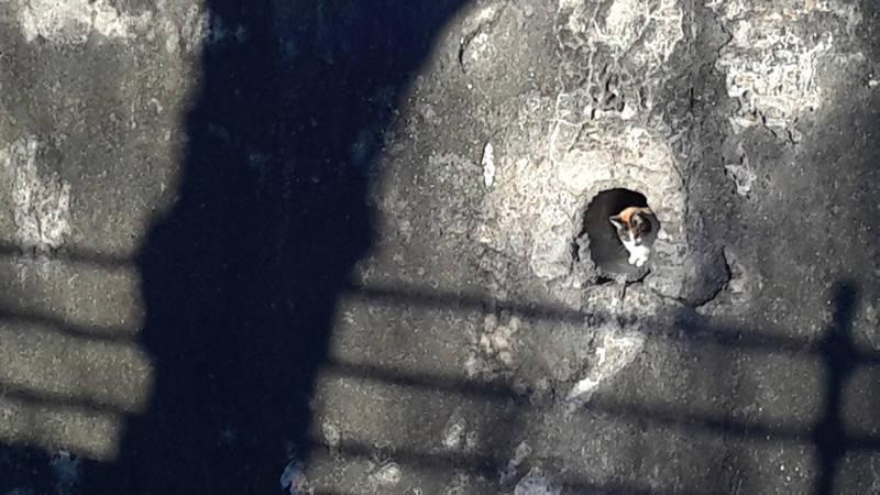 Андалусия в условиях кризиса. Малага-Гранада-Кордова-Севилья-Кадис (янв. 2015). Возвращение в Малагу. (янв.2017)