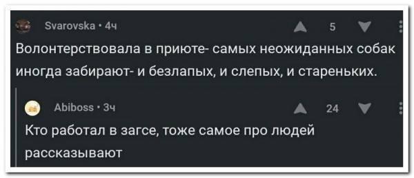 http://images.vfl.ru/ii/1508506084/bf2dd9ef/19074896_m.jpg