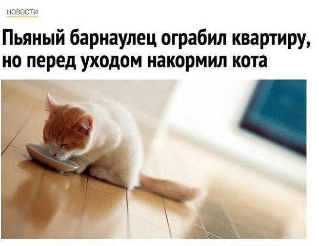 http://images.vfl.ru/ii/1508606886/dc2827fb/19088278_m.jpg