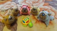 Моя галерея,любимых игрушек-повязушек - Страница 3 19123558_s