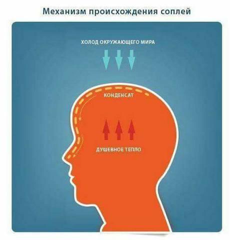http://images.vfl.ru/ii/1509021459/22cc65f9/19155094_m.jpg