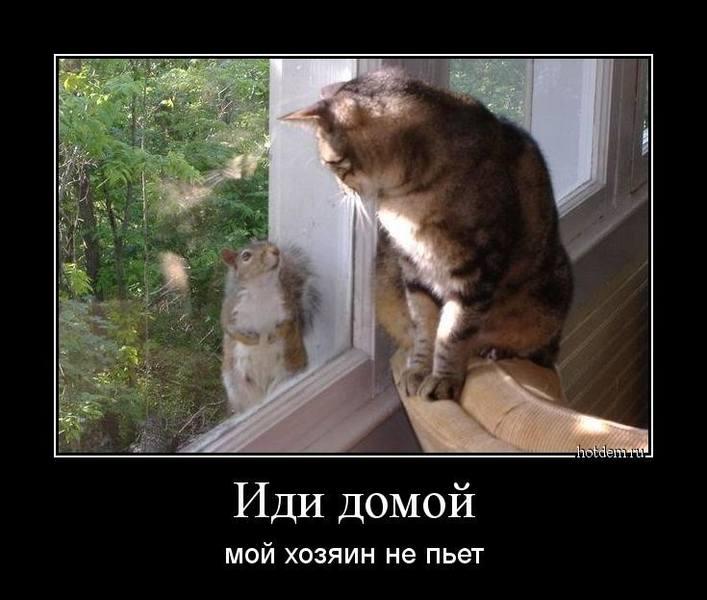 http://images.vfl.ru/ii/1509127802/2e4ad521/19171435.jpg