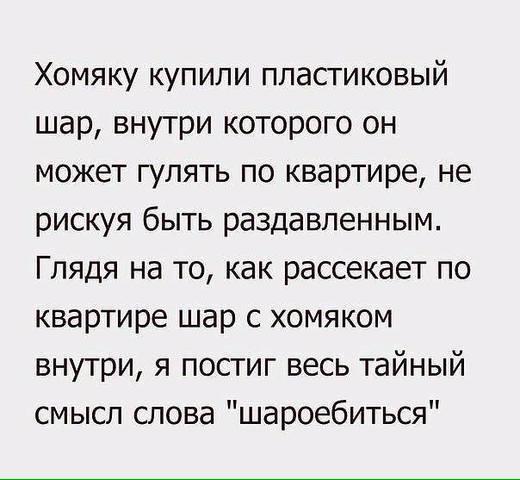 http://images.vfl.ru/ii/1509210874/e2c967a9/19182066_m.jpg