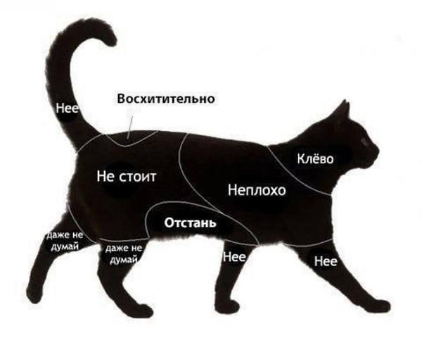 http://images.vfl.ru/ii/1509567224/fea4810e/19240996_m.jpg