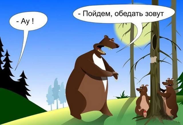 http://images.vfl.ru/ii/1510776089/81b558cc/19438536_m.jpg