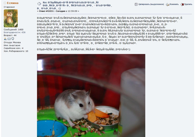 http://images.vfl.ru/ii/1510914617/9afba3d1/19457368.jpg
