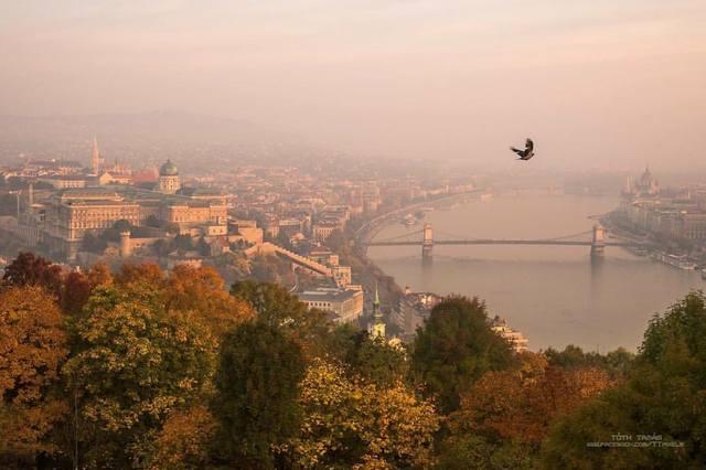 http://images.vfl.ru/ii/1511012173/8eb8f58d/19472105_m.jpg