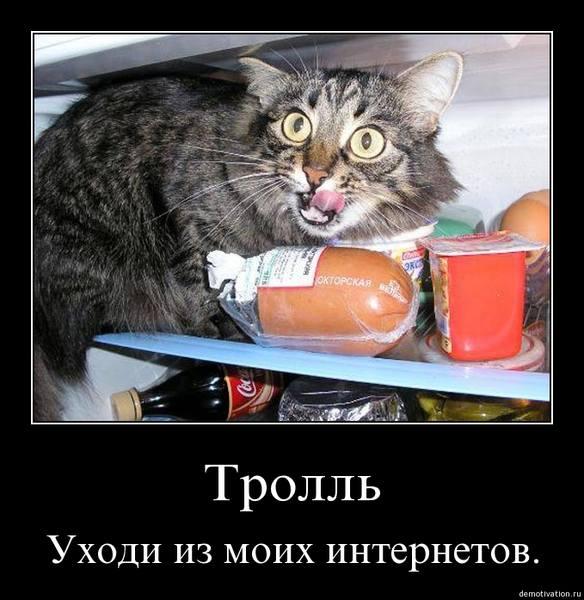 http://images.vfl.ru/ii/1511237703/e230f0dd/19506017.jpg