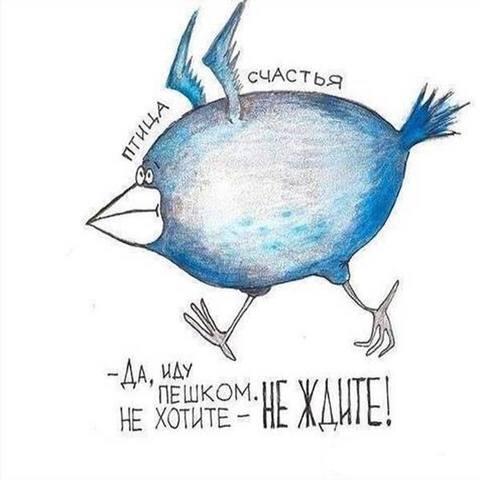 http://images.vfl.ru/ii/1511457228/20128af7/19542746_m.jpg