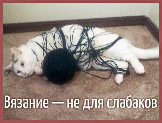 http://images.vfl.ru/ii/1511530550/13f02b29/19552092_m.jpg