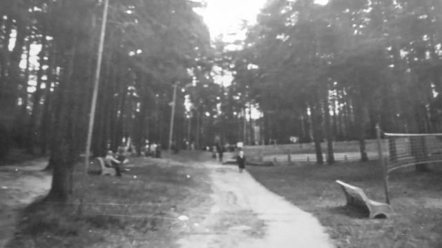 """Пятачок"" 19558952_m"