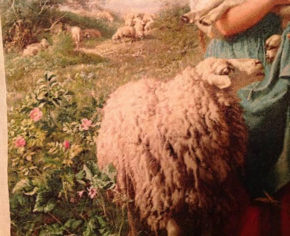 http://images.vfl.ru/ii/1511795267/6032b649/19590782_m.jpg