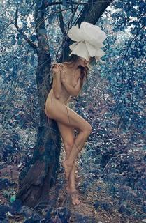 http://images.vfl.ru/ii/1511815830/8a7601a9/19596551_m.jpg