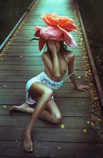 http://images.vfl.ru/ii/1511815830/fd39754c/19596552_m.jpg