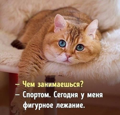 http://images.vfl.ru/ii/1512046858/1ddf623c/19630050_m.jpg