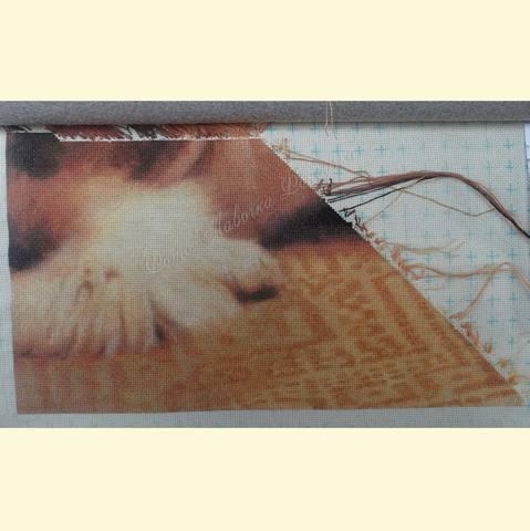 http://images.vfl.ru/ii/1512222336/24c7d69a/19657211_m.jpg