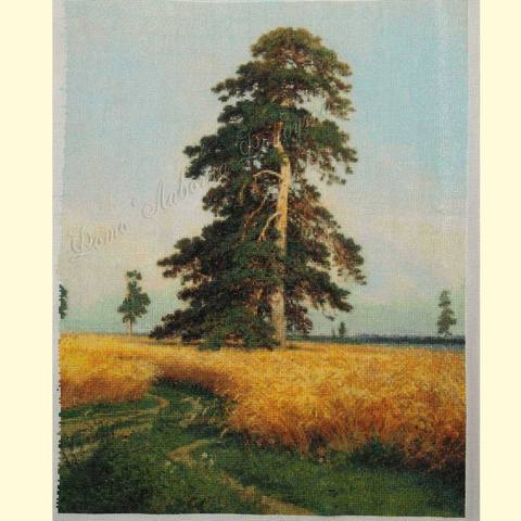 http://images.vfl.ru/ii/1512226402/d71e2a05/19657945_m.jpg