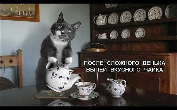 http://images.vfl.ru/ii/1512240927/e9507e97/19661479_m.jpg