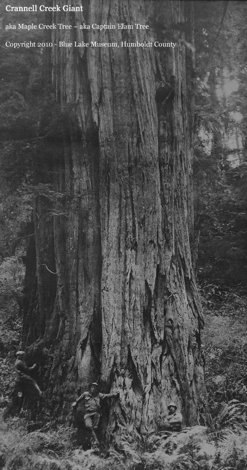 Раскрывая секреты: парки Запада от Калифорнии до Монтаны