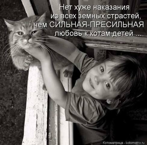 http://images.vfl.ru/ii/1512577053/df03105b/19710510_m.jpg