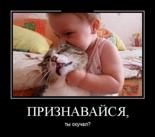 http://images.vfl.ru/ii/1512577074/889cfc29/19710513_m.jpg