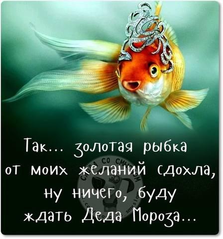 http://images.vfl.ru/ii/1512583900/12cb7c47/19712016_m.jpg
