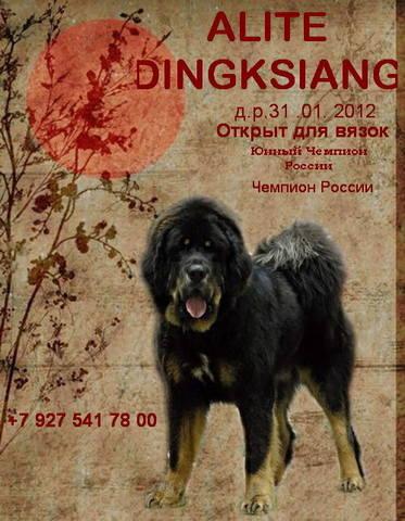 http://images.vfl.ru/ii/1513416319/f121922e/19816472_m.jpg