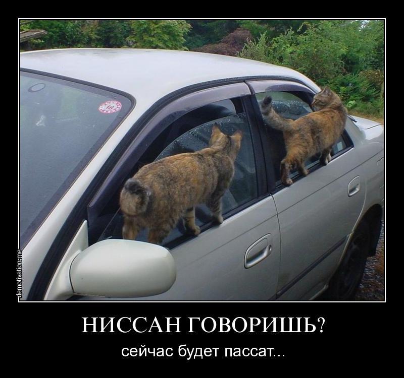 http://images.vfl.ru/ii/1513488692/1253200c/19823980.jpg