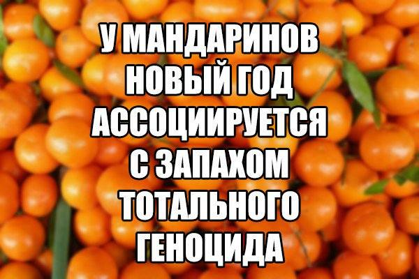 http://images.vfl.ru/ii/1514409745/fc729e38/19940157_m.jpg
