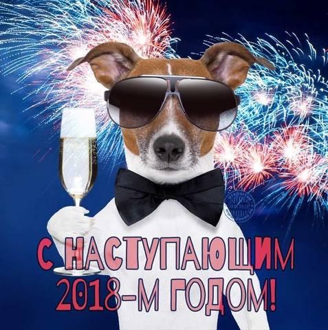 http://images.vfl.ru/ii/1514707923/a6867577/19974524_m.jpg
