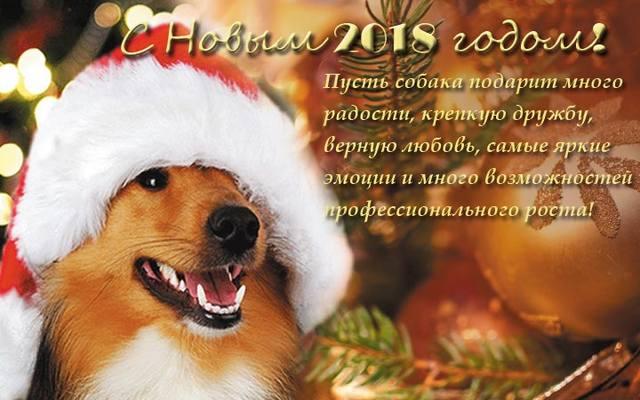 http://images.vfl.ru/ii/1514754525/74ad2584/19979379_m.jpg