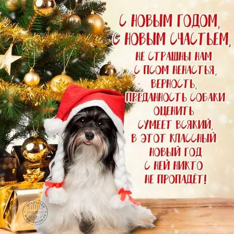 http://images.vfl.ru/ii/1514810142/1837d466/19982593_m.jpg