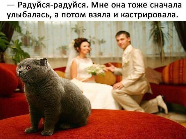 http://images.vfl.ru/ii/1515157906/40d2d163/20028877_m.jpg