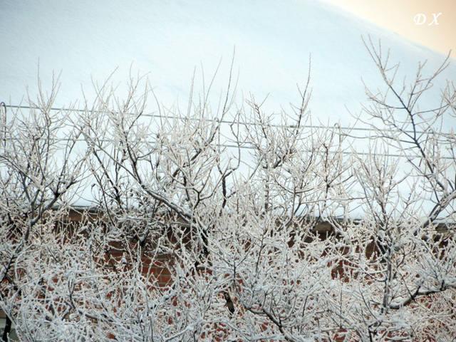 Морозный Январь