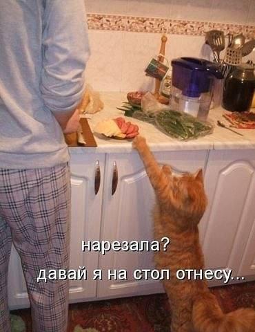 http://images.vfl.ru/ii/1515516070/caef9052/20077712_m.jpg