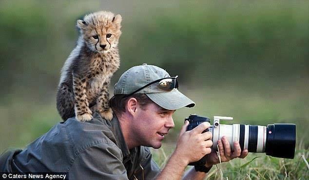 Эти удивительные животные, птицы и другие создания природы - Page 2 20104060_m