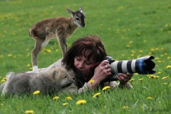 Эти удивительные животные, птицы и другие создания природы - Page 2 20104066_m