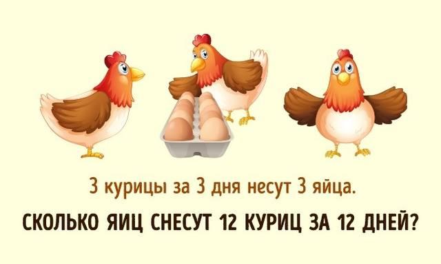 http://images.vfl.ru/ii/1515738702/f2db0354/20113746_m.jpg