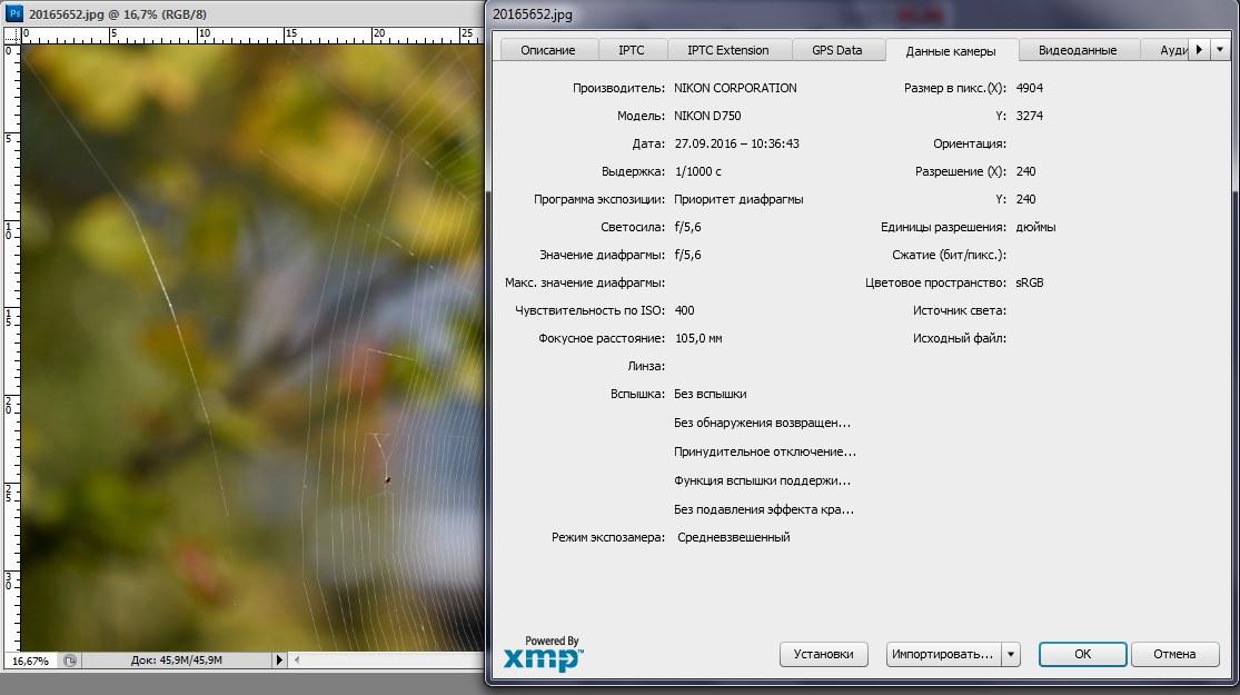 http://images.vfl.ru/ii/1516048950/f825aad7/20165934.jpg
