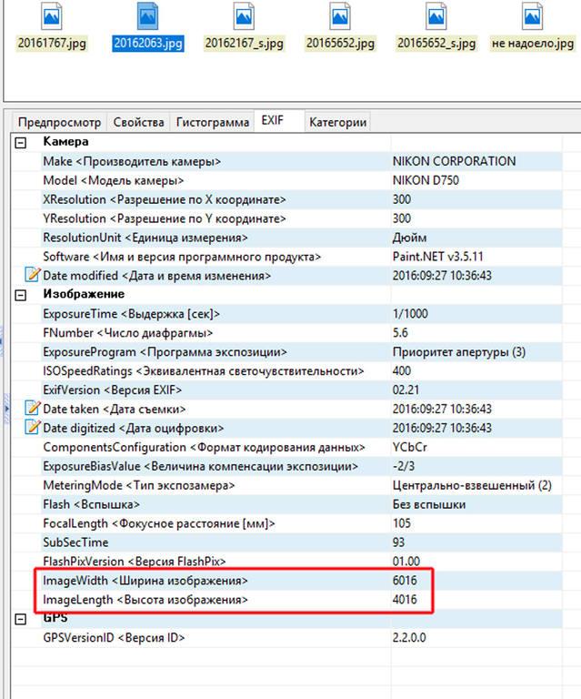 http://images.vfl.ru/ii/1516050560/1bb1bdb8/20166268.jpg
