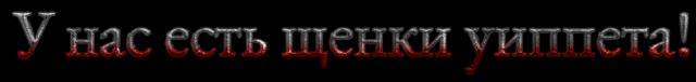 EDELEN - Portal 20205245_m