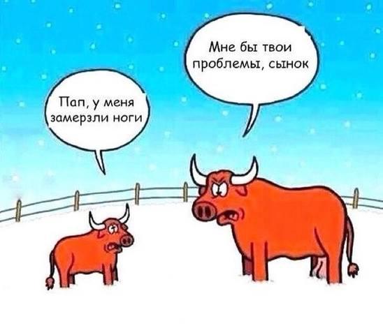 Птицеводы Бурятии и Прибайкалья - Страница 3 20254930_m