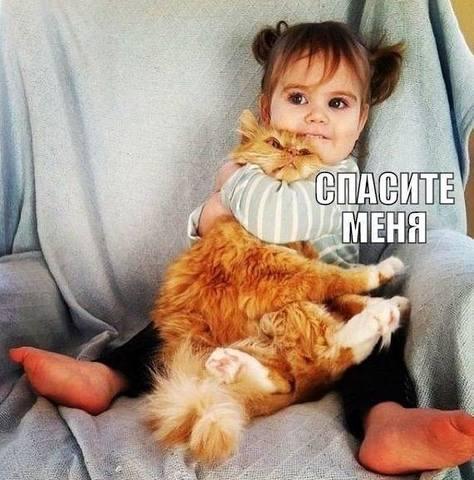 http://images.vfl.ru/ii/1516823335/43859262/20296284_m.jpg