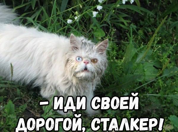 DUToWBhWkAIcNoV