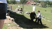 http//images.vfl.ru/ii/1517002587/1543b775/20324158_s.jpg