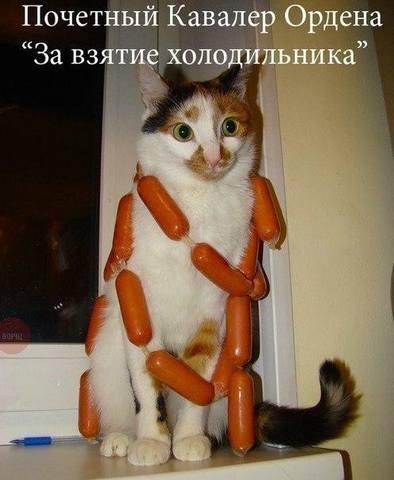http://images.vfl.ru/ii/1517082692/1e4845a9/20335115_m.jpg