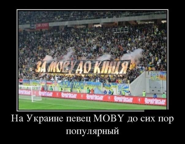 http://images.vfl.ru/ii/1517087381/9a2c1005/20335841_m.jpg